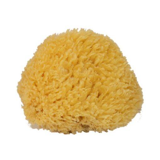 112800 Natursvamp Mediterranean Sponge Small