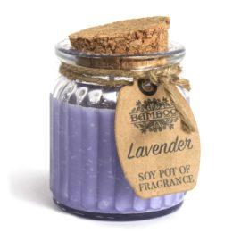 113009 Ancient Wisdom Doftljus av Sojavax Lavendel