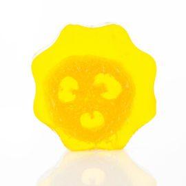 113221 Ancient Wisdom Tvål Loofah Soap - Grapefruit1