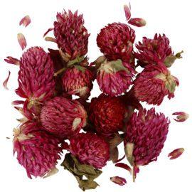 113243 Äkta Torkade Blommor Rödklöver 15g