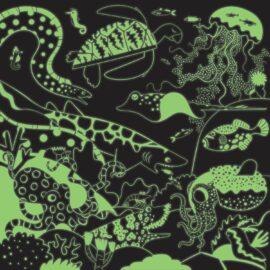 113492 Mudpuppy Pussel Glow-in-the-dark Världshav 500 bitar1